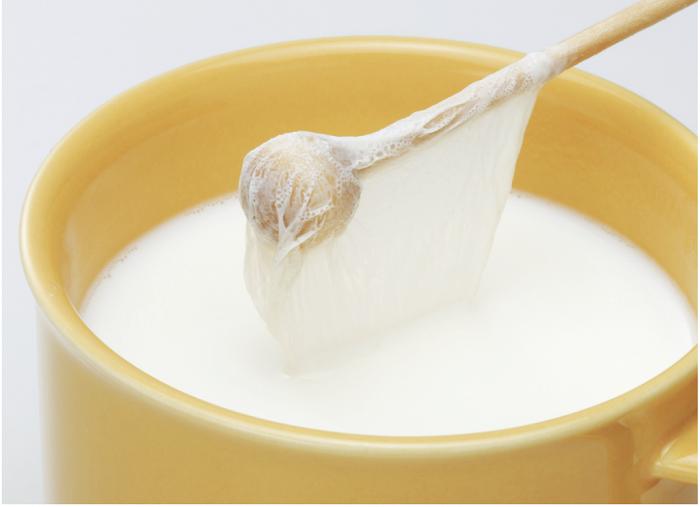 どうして牛乳に膜ができるの?不思議な雑学・おもしろ豆知識