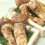 松茸の保存は常温・冷蔵・冷凍の使い分けで香りをキープ!新鮮で美味しい松茸の見分け方や下処理方法も