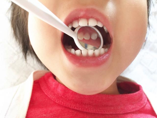 の 抜け ない 歯 子供
