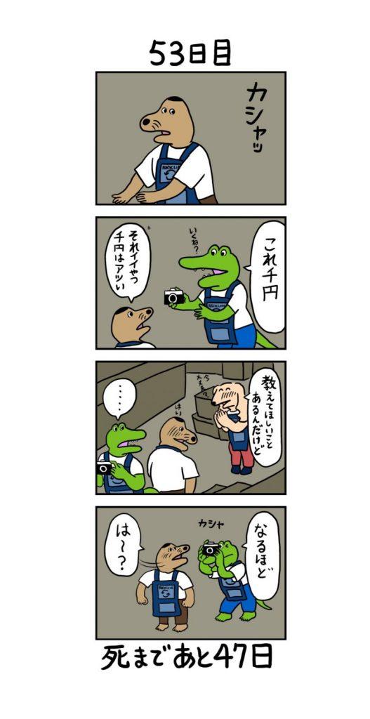 死ぬ ワニ 100 日 目