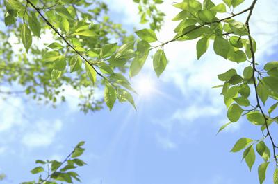 2020年の立夏はいつからいつまで?夏至との違いや季語の意味から「立夏の候」の使い方まで