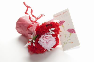 感謝の気持ちが伝わる!義母へ贈る母の日のメッセージの文例