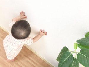 赤ちゃんのつたい歩きはいつから 早いor遅いと心配なことは ひとり歩きまでの過程や注意点 小学館hugkum