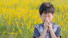 子どもの花粉症のまとめ(子供のアレルギー特集)