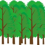 「森」と「林」の違い、子どもに聞かれたらどう答える?【知って得する日本語ウンチク塾】